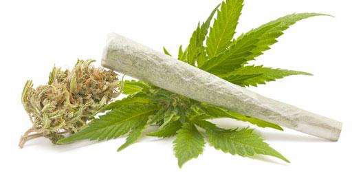 Medical Marijuana and The Expanding Cannabis Market
