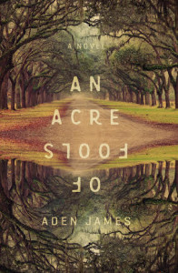 An Acre of Fools Book Cover