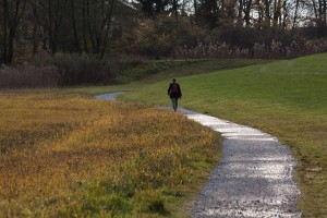 Man walking on path thinking about his Sexual Addiction