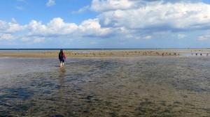 beach-435775_640
