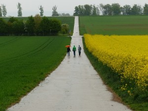People walking on path with others from Support Groups