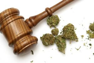 drug-laws