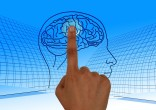 finger touching part of brain in a picture
