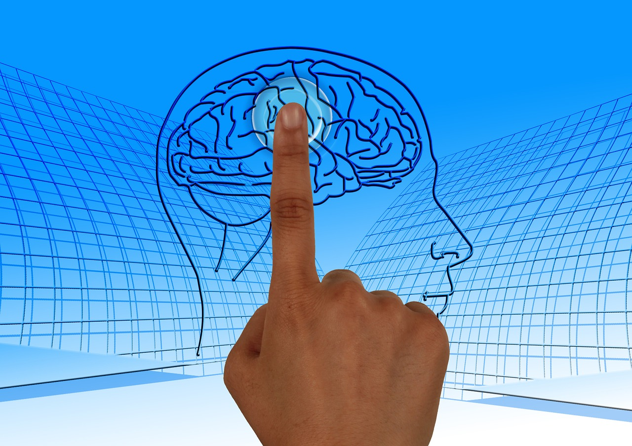 Brain picture for Transcranial Magnetic Stimulation