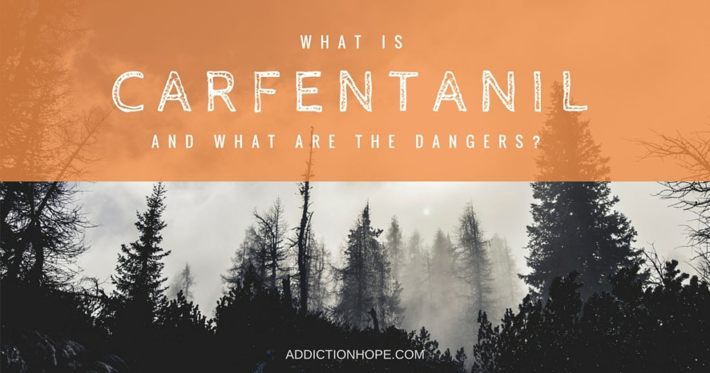 What Is Carfentanil - Addiction Hope