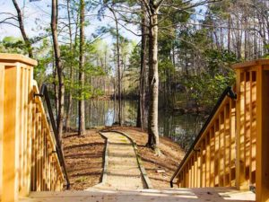 Lakeview Behavioral Health Trail