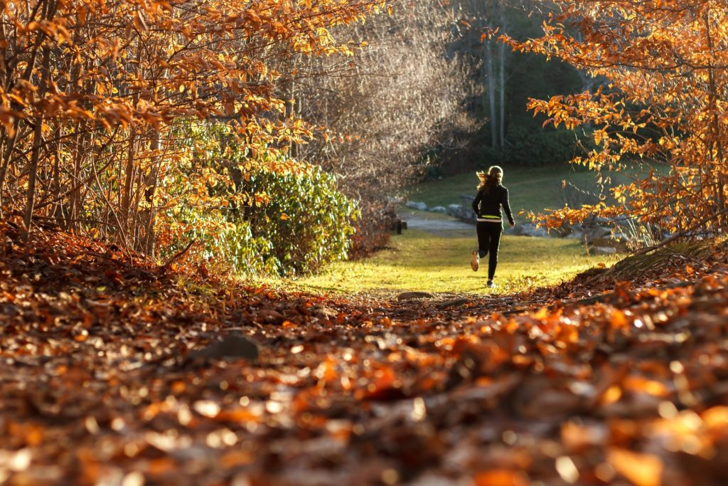 Woman Athlete Jogging Running on Trail in Woods